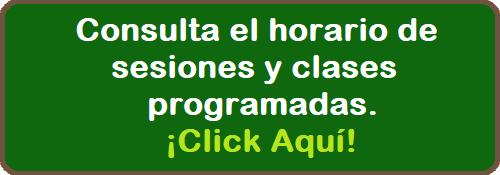 Horario Clases Sesiones Programadas